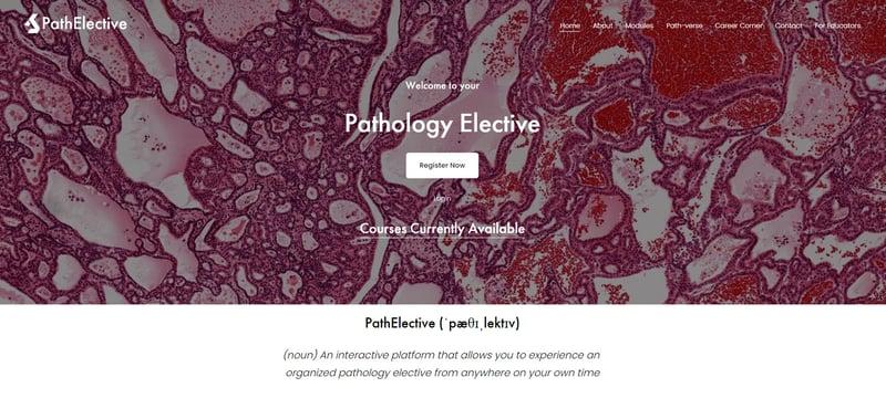 pathelective 4